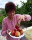 sazenice obřích jahod gigantela