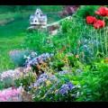 Červen a červenec - pěstitelský kalendář