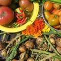 Podzim v zeleninové zahradě